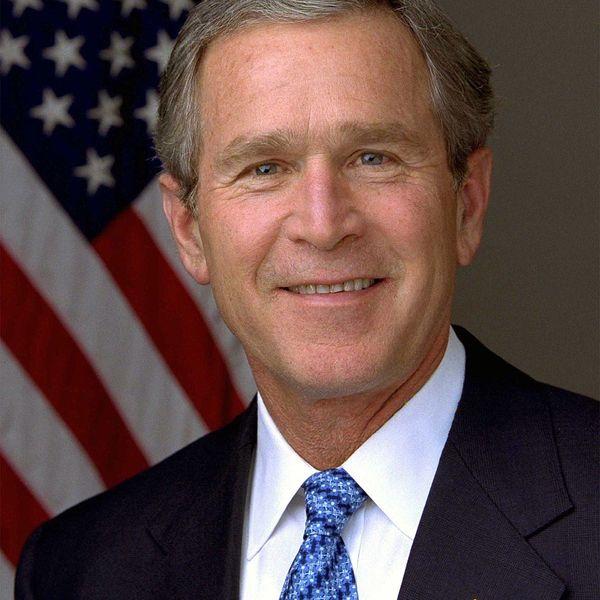 George W Bush Essay Examples