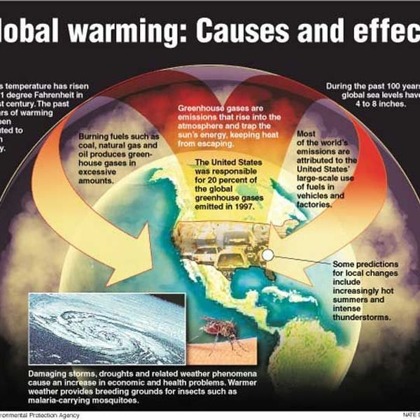 Global Warming Cause And Effect Essay Examples