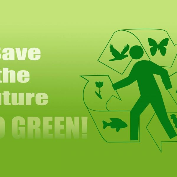Go Green Save Future Essay Examples