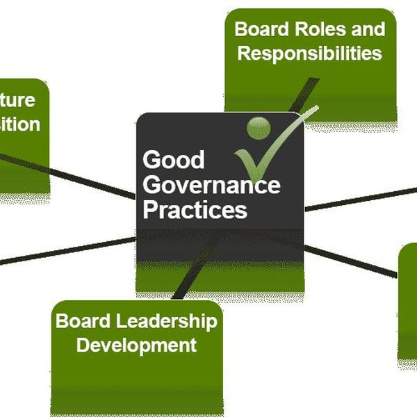 Good Governance Practices Essay Examples