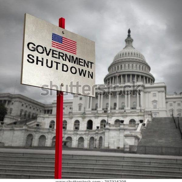 Government Shutdown Essay Examples