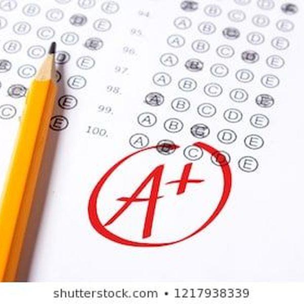 Grades Essay Examples