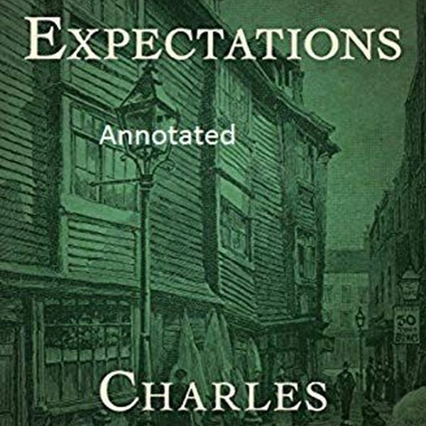 Great Expectations Essay Examples