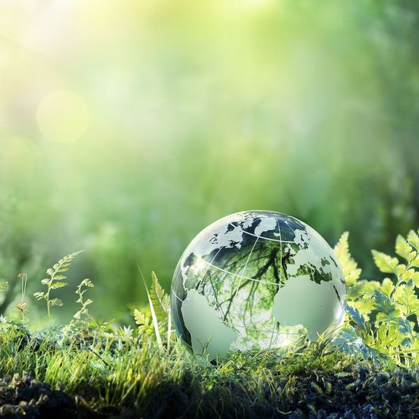 Green Environment Essay Examples