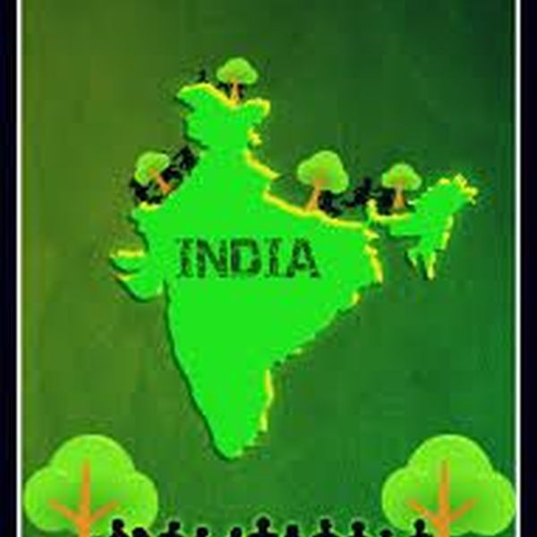 Green India For Better Tomorrow Essay Examples