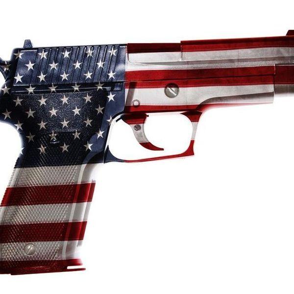 Gun Control In America Essay Examples