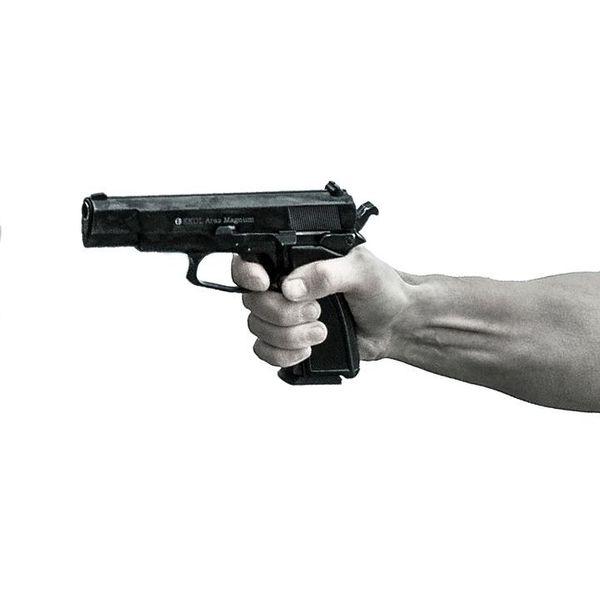 Gun Control Essay Examples