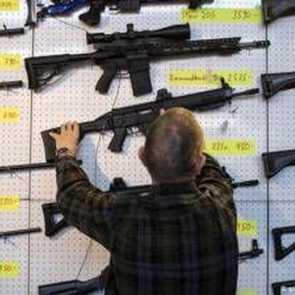 Gun Laws Essay Examples