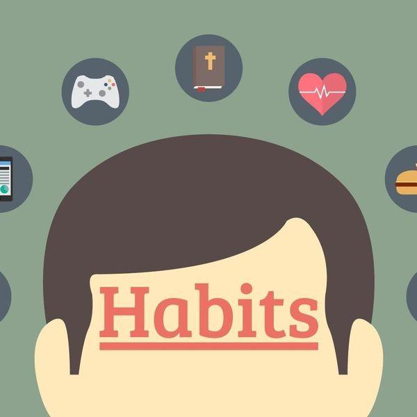 Habit Essay Examples