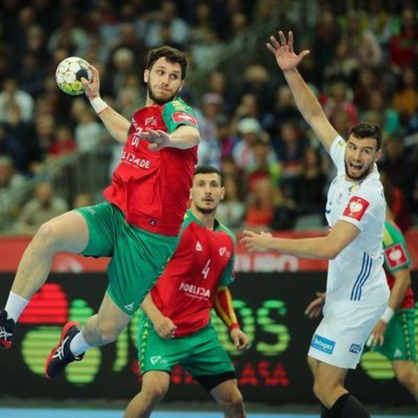 Handball Essay Examples