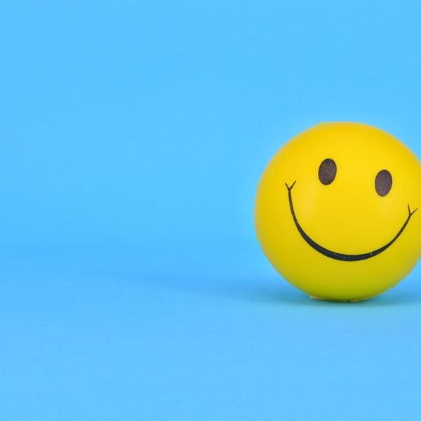 Happiness Essay Examples