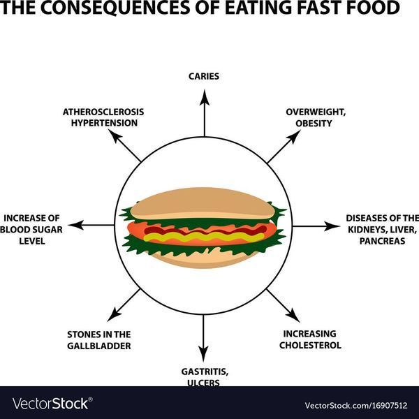 Harmful Effects Of Fast Food Essay Examples