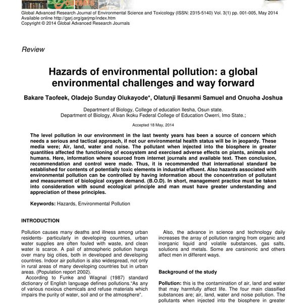 Hazards Of Environmental Pollution Essay Examples