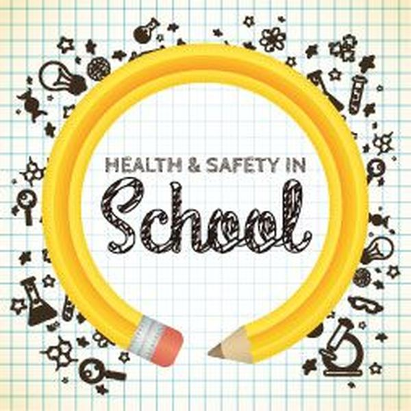 Health And Safety In Schools Essay Examples
