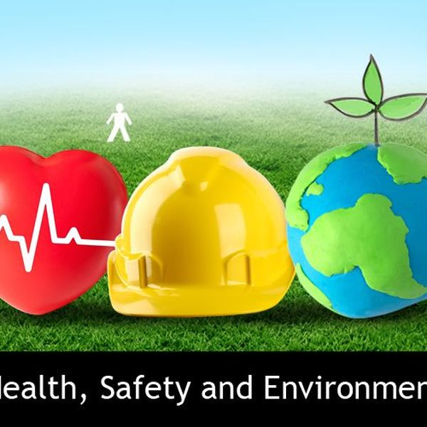 Health Safety And Environment Essay Examples