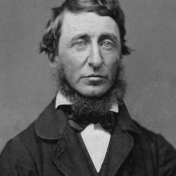 Henry David Thoreau Essay Examples