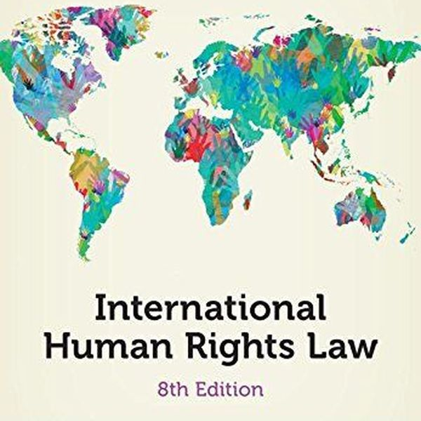 Human Rights Law Essay Examples