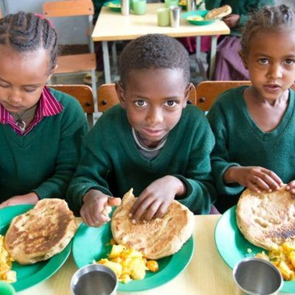 Hunger In Third World Countries Essay Examples