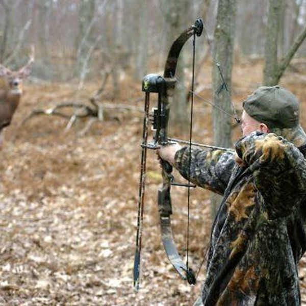 Hunting As A Sport Essay Examples