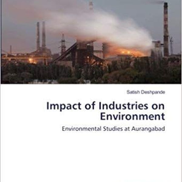 Impact Of Industries On Environment Essay Examples