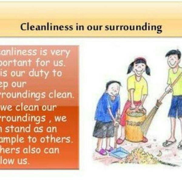 Importance Of Cleanliness In School Essay Examples