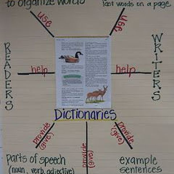 Importance Of Dictionary Essay Examples