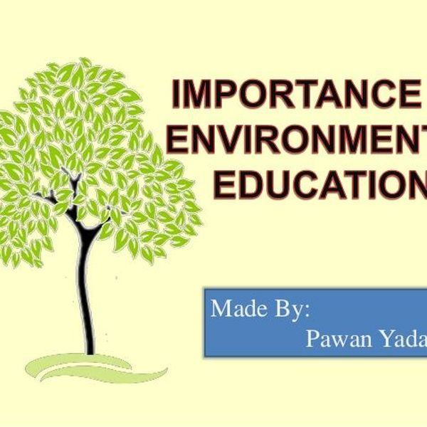 Importance Of Environmental Education Essay Examples