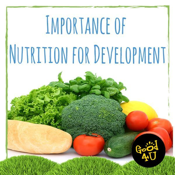 Importance Of Nutrition Essay Examples