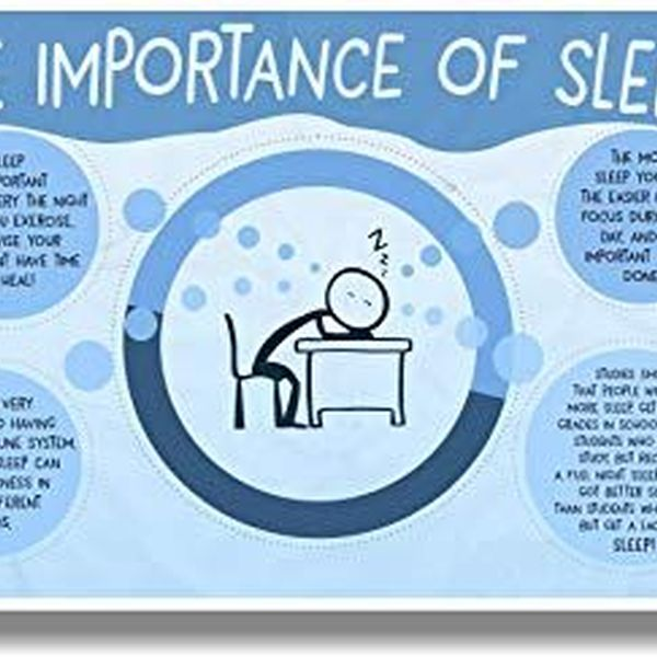 Importance Of Sleep Essay Examples