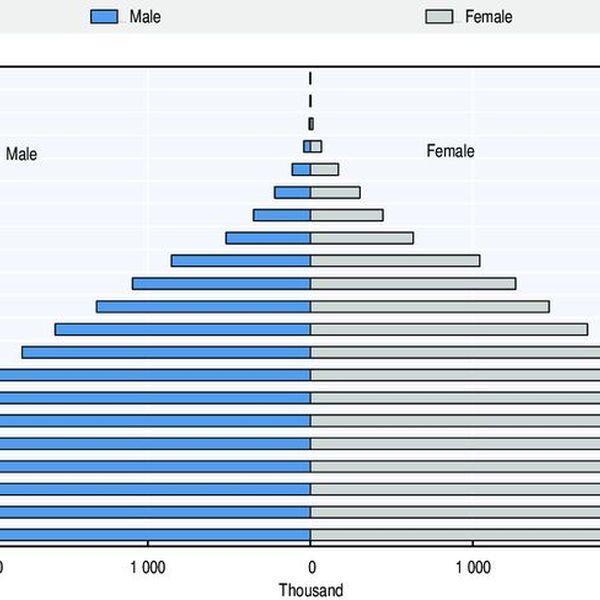 Increasing Population Essay Examples