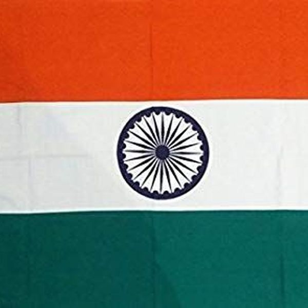 Indian National Flag Essay Examples