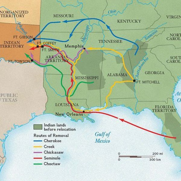 Indian Removal Act Essay Examples