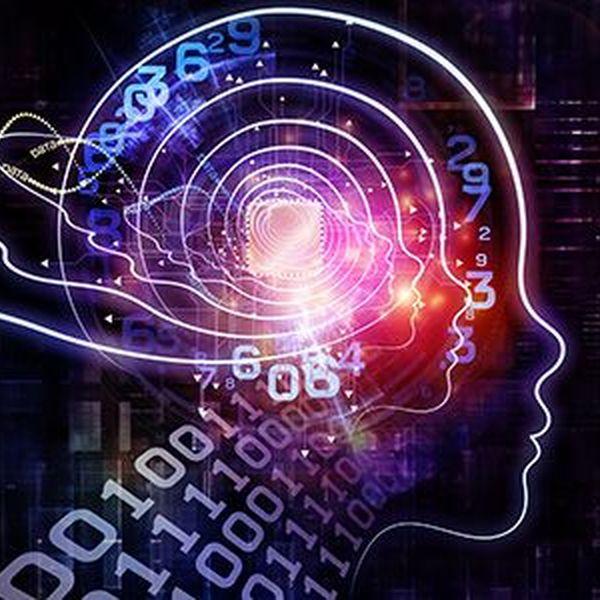 Intelligence Essay Examples