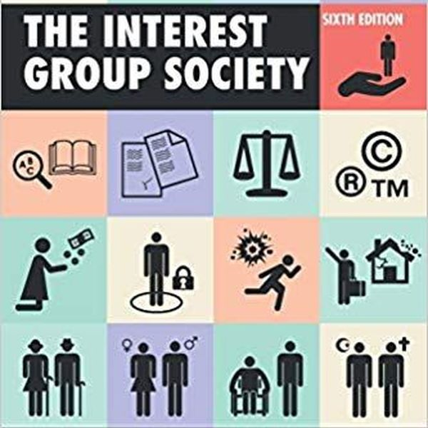 Interest Groups Essay Examples