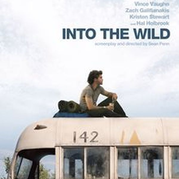 Into The Wild Essay Examples