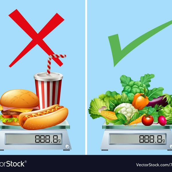 Junk Food And Healthy Food Essay Examples