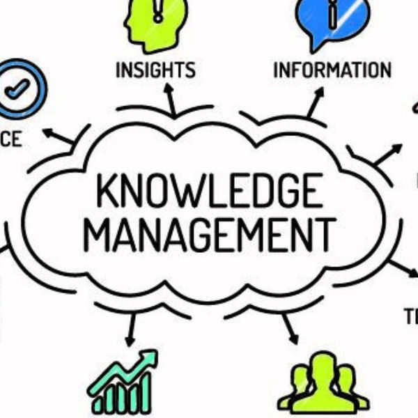 Knowledge Management Essay Examples