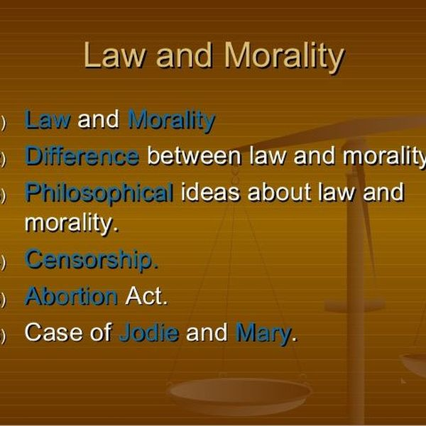 Law And Morality Essay Examples