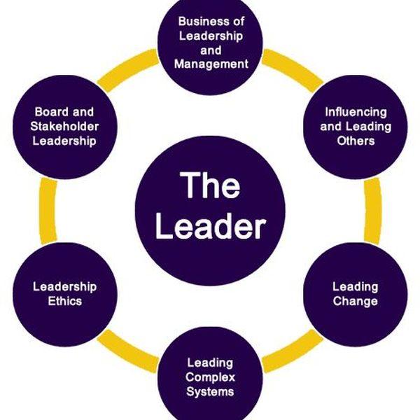 Leadership In Nursing Essay Examples