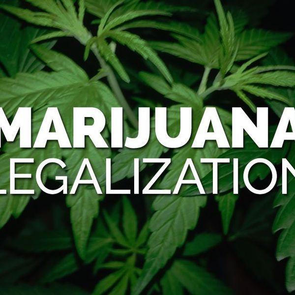 Legalizing Marijuana Essay Examples