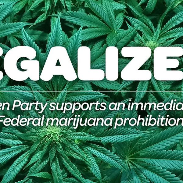 Legalizing Weed Essay Examples