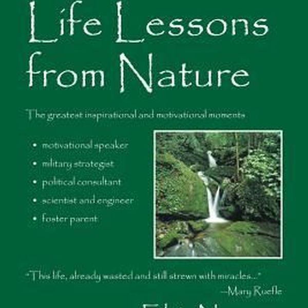 Lessons From Nature Essay Examples