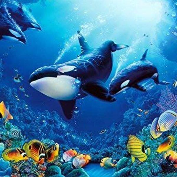 Life Underwater Essay Examples