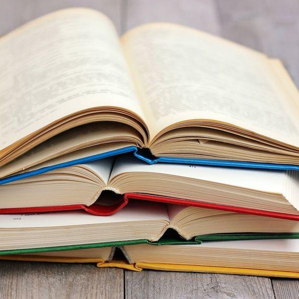 Literature Essay Examples