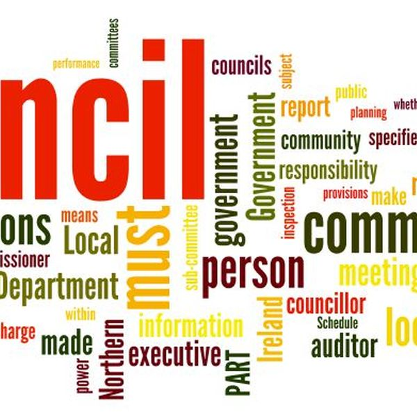 Local Government Essay Examples