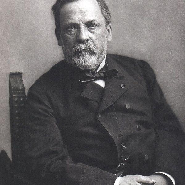 Louis Pasteur Essay Examples