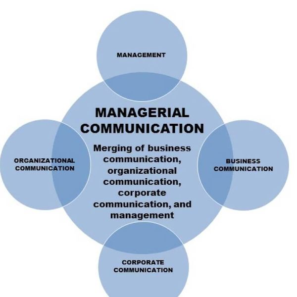 Managerial Communication Essay Examples