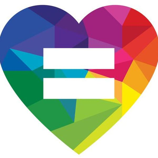Marriage Equality Essay Examples