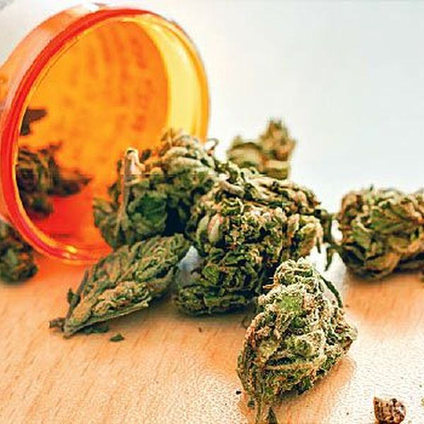 Medical Marijuana Essay Examples