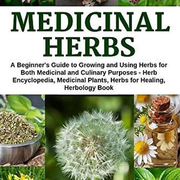 Medicinal Plants Essay Examples